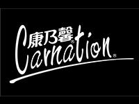 康乃馨02